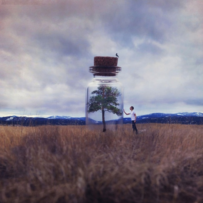 Joel Robison in his tiny world